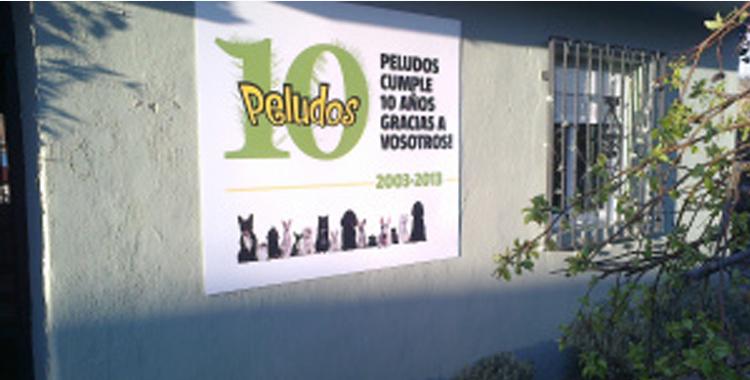 Cartel décimo aniversario Peludos residencia canina y felina