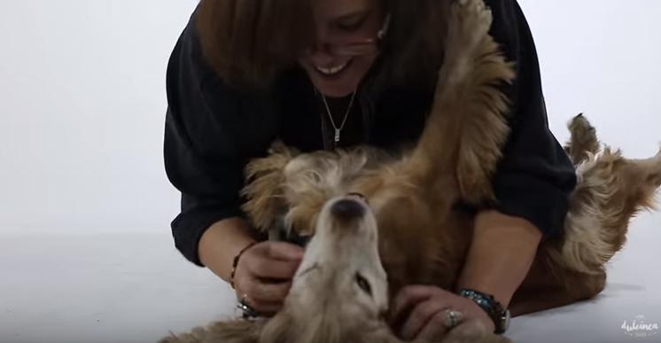 Perro policía y su nueva dueña