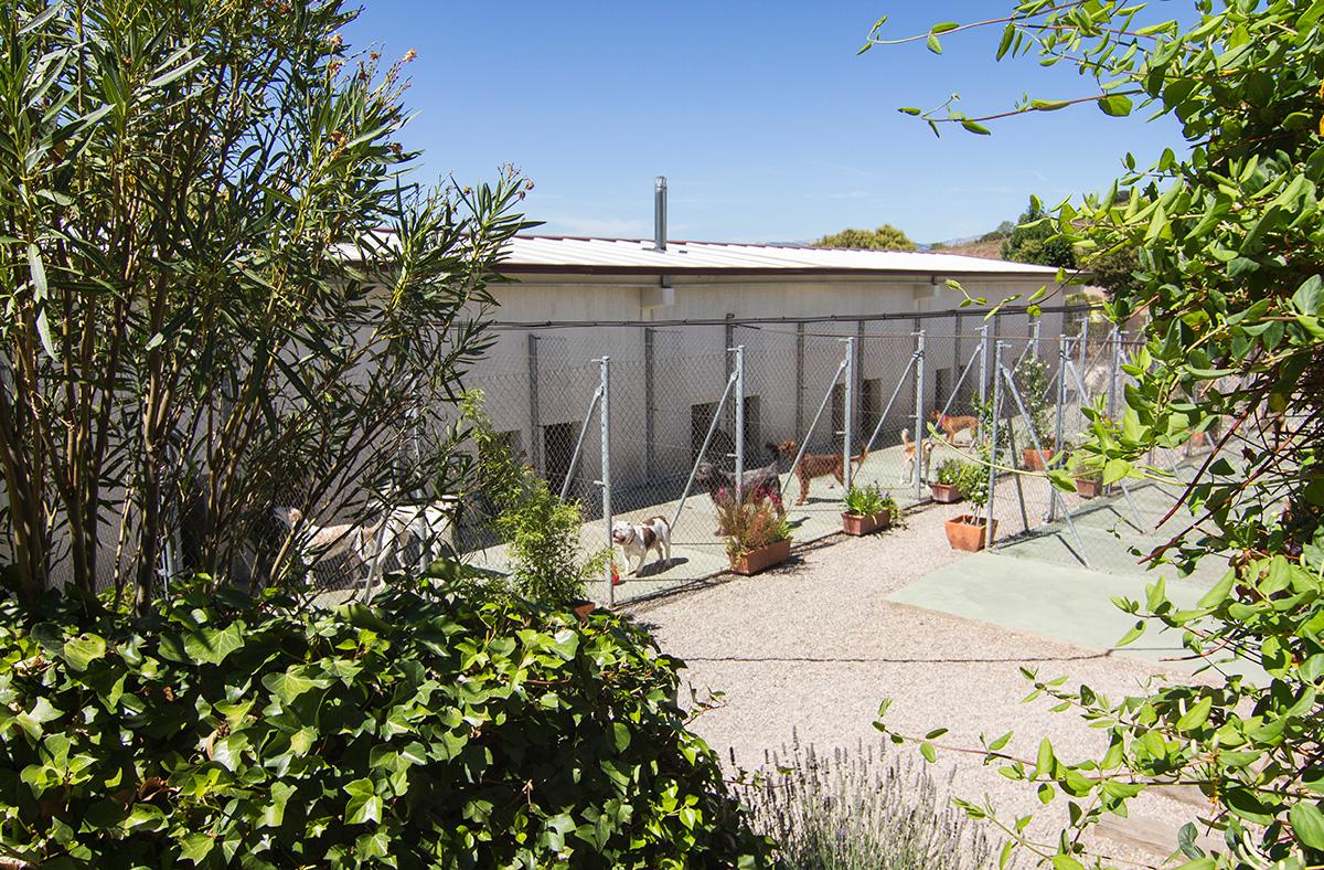 Vista exterior de las Instalaciones Peludos en la zona de perros