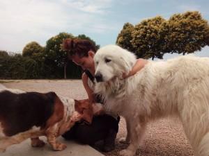 Una cuidadora de Peludos residencia canina y felina cuidando un basset y un montaña de los Pirineos