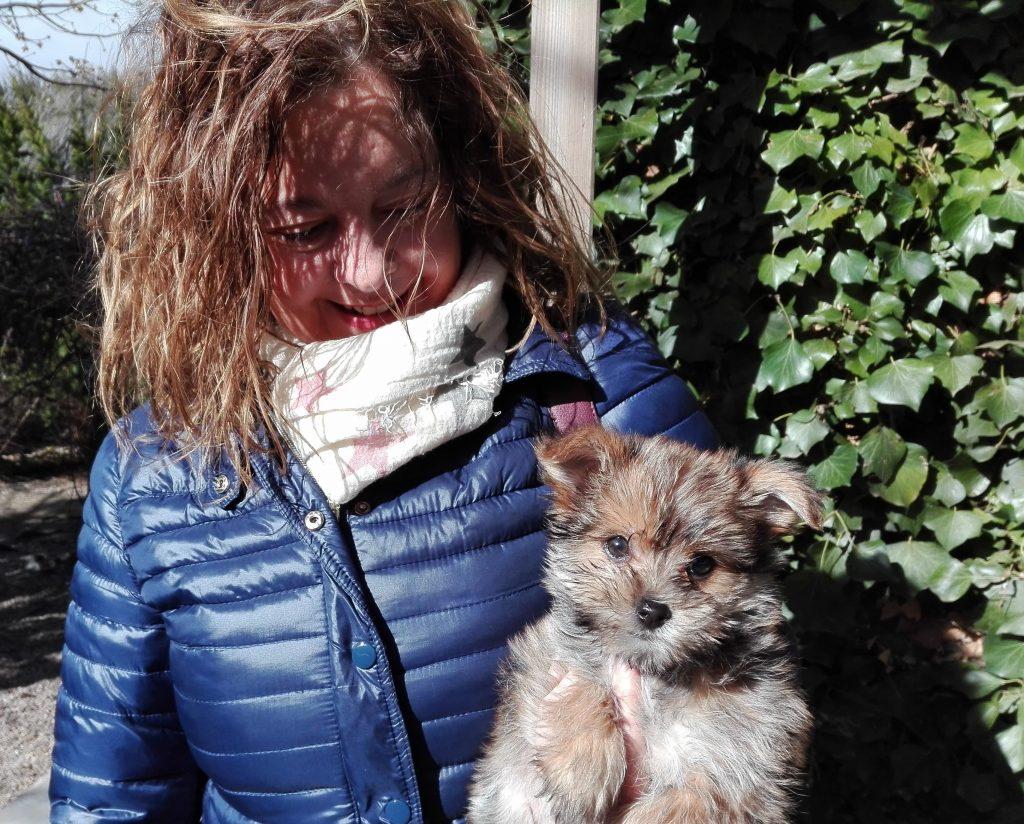 Perra en Peludos residencia canina y felina