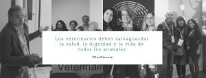 veterinarios aboliciionistas de la tauromaquia de peludos, residencia felina en la Rioja