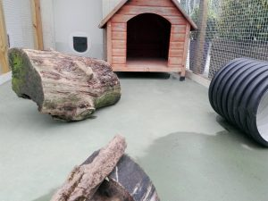 Patio de la suite de conejos, hurones y chinchillas