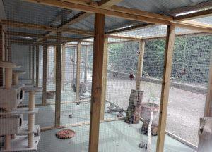 Todos los catios tienen una parte techada para la lluvia y otra parte sin techo para tomar el sol